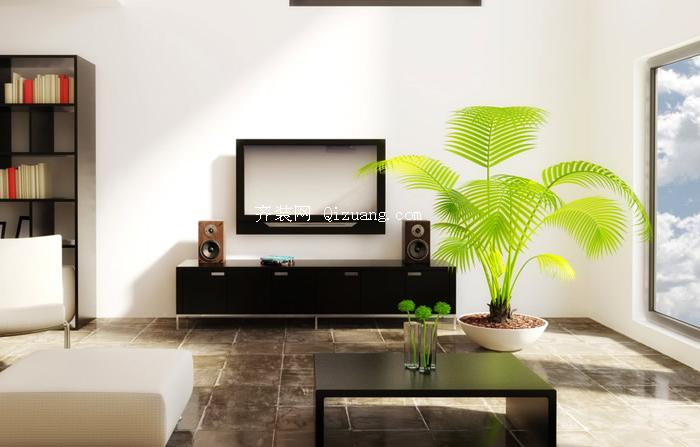 客厅植物摆放效果图