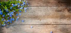 如何选购橡木地板,其方法是什么?