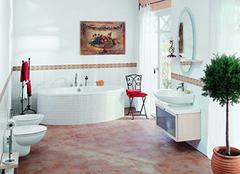 你家浴室是这样清洁保养的吗?