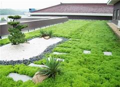 打造屋顶花园,花前月下不再是梦!