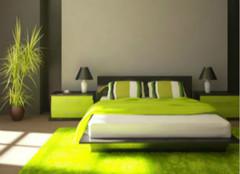 卧室应该怎么摆放植物,其风水有哪些?