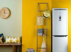 冰箱收纳的技巧有哪些?