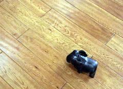栎木地板的购选误区,你中枪了么?
