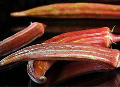 分享红秋葵的养殖及功效