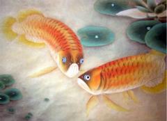 比较美的金龙鱼图片,你都见过吗?