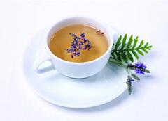 科普饮用玉兰花茶的作用以及方法