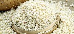 你知道高粱米的功效与作用有哪些吗?
