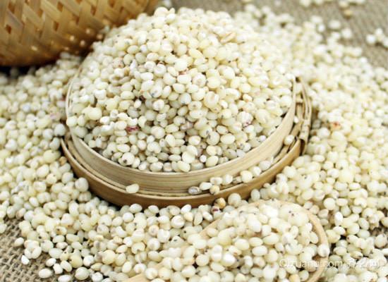 高粱米的功效与作用