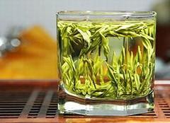 忍冬花茶:养生保健 老少皆宜