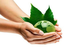 选购环保装修材料 打造绿色家居环境