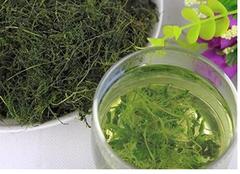 绞股蓝茶:养生保健的上品茶