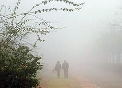 环境质量下降 雾霾危害不容小觑