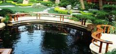 鱼池设计要谨慎 给鱼一个安心的家
