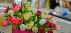 室内花卉盆景美化家居 养殖注意事项需把握