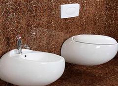 墙排马桶:卫浴间的马桶新秀