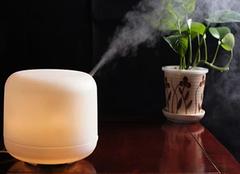 加湿器的危害有哪些 如何正确使用加湿器