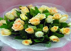 香槟玫瑰养殖方法详细介绍