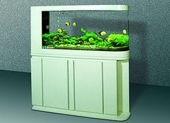 鱼缸的分类有哪些 鱼缸过滤系统介绍