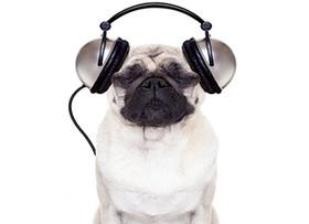 煲耳机什么意思  煲耳机专用音乐