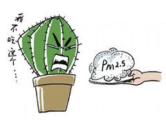 空气污染物质pm2.5是什么?pm2.5净化方法