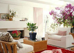 客厅植物摆放风水 客厅植物摆放注意事项 室内有毒植物不能放