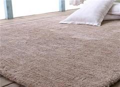 常见的地毯清洗方法 让你省心一百倍