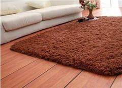 地毯清洗用具及程序 让你居住更舒心