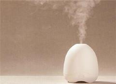 超声波加湿器的危害 不得不防
