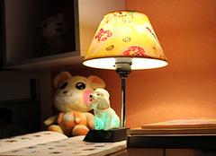 台灯品牌相关企业介绍 你家那道闪亮风景!
