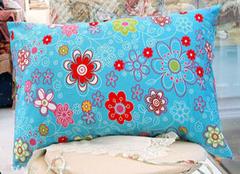 这样材质的枕头 怎能让您安眠