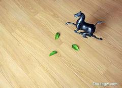 竹木地板选购小诀窍 让家居更清新