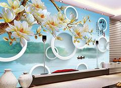 3D墙纸六大优点 呈现另一番装饰效果