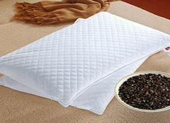 荞麦枕头好还是决明子枕头好?对比让你更明白