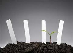 盆栽植物培养土 找对方法很重要
