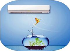 大金变频空调智慧眼 调节温度更智能
