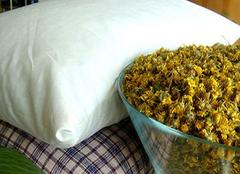 菊花枕头作用多 自己制作更有趣