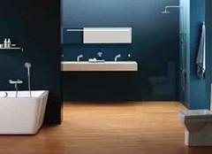 卫浴消费五大趋势 走在卫浴行业前沿