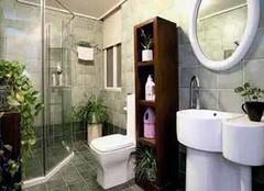 厕所除臭有妙招 一秒钟变清新