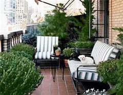  阳台怎么改造成花园 需要怎么做呢