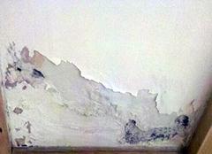 如何做好室内墙面防潮? 各种方法都在这里