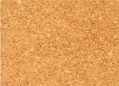 软木地板有哪些优点 别只知道到实木地板了