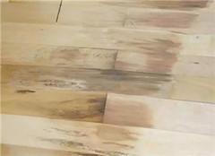 怎么避免地板潮湿 实用技巧贴推荐