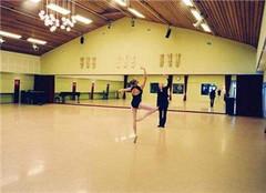  舞蹈地板怎么样 价格是多少