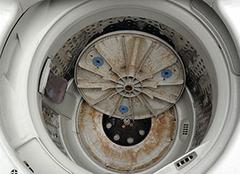 一定要学的洗衣机清洁方法 否则脏过马桶