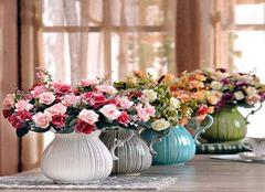 室内花卉摆放注意事项,室内花卉如何选择?