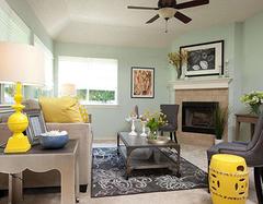 地毯清洗的几种方法 成本绝不超过十元