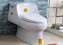 鹰卫浴马桶的种类有哪些 超实用!