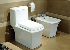 怎么正确挑选座便器 卫浴产品一定要选好