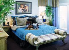 可以净化卧室空气的植物有哪些 打造清新卧室