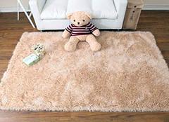 掌握正确的地毯清洁姿势 清理再也不是难事